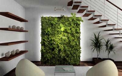 Ozeleňování interiérů