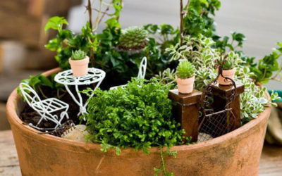 Kouzelná zahrada v květináči, kterou dokážete udělat sami